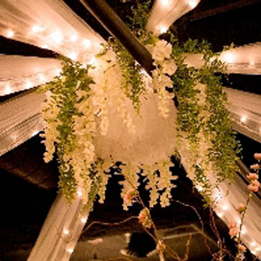 Wisteria Photo Idea - Idea Gallery - Budget Ceiling decoration ideas